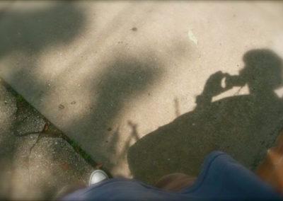0010_shadowalonggemini